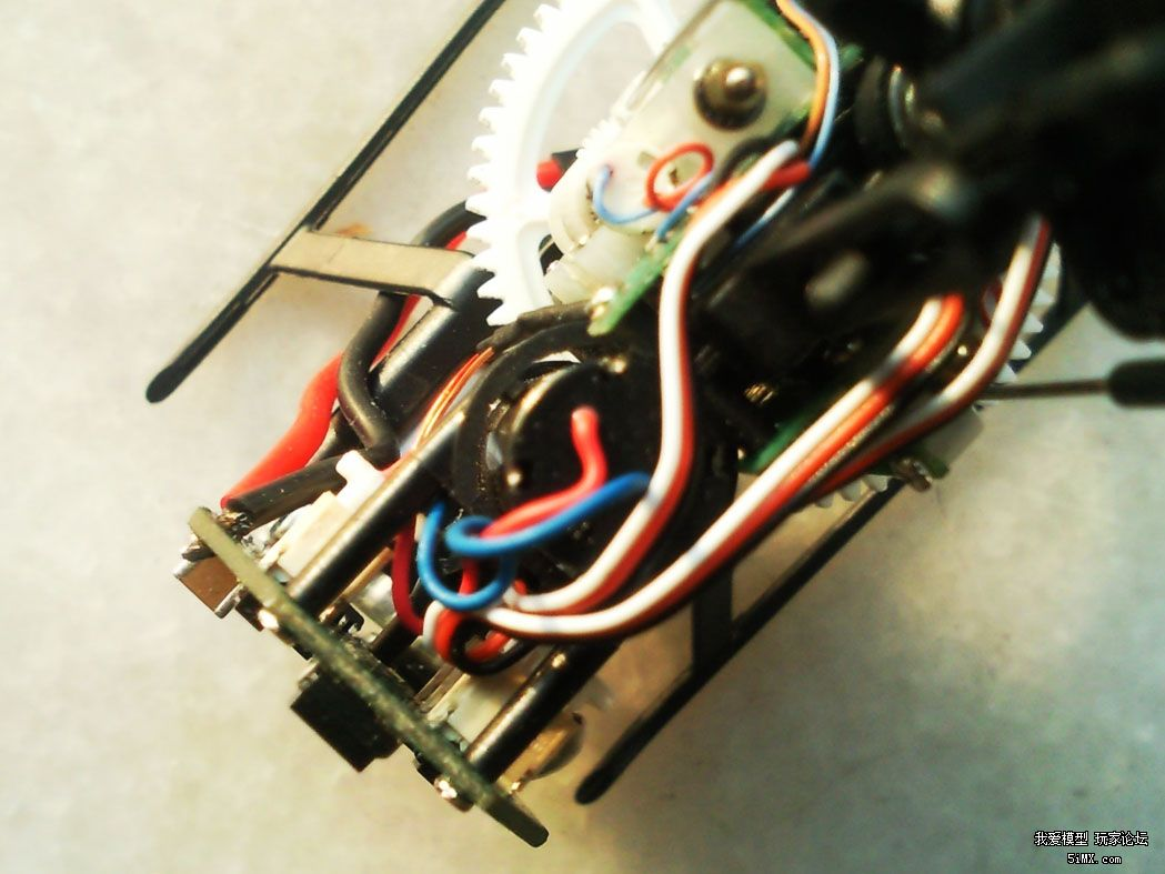 SNC00784.jpg